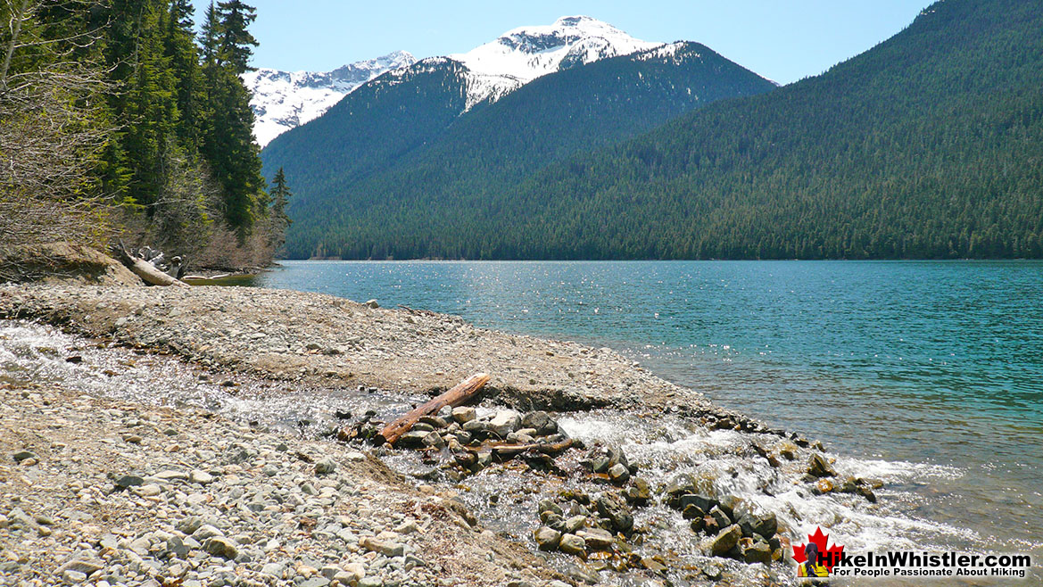 Cheakamus Lake Singing Creek