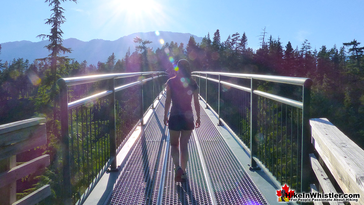 Whistler Bungee Bridge Near Brandywine Falls
