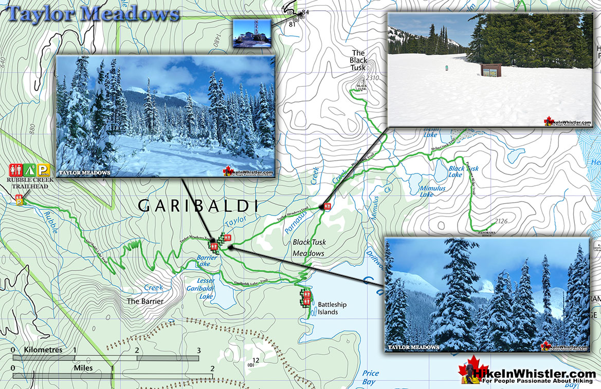 Taylor Meadows Snowshoeing Map