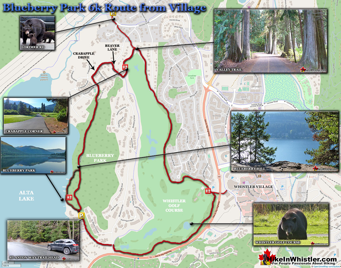 Blueberry Park Whistler Map