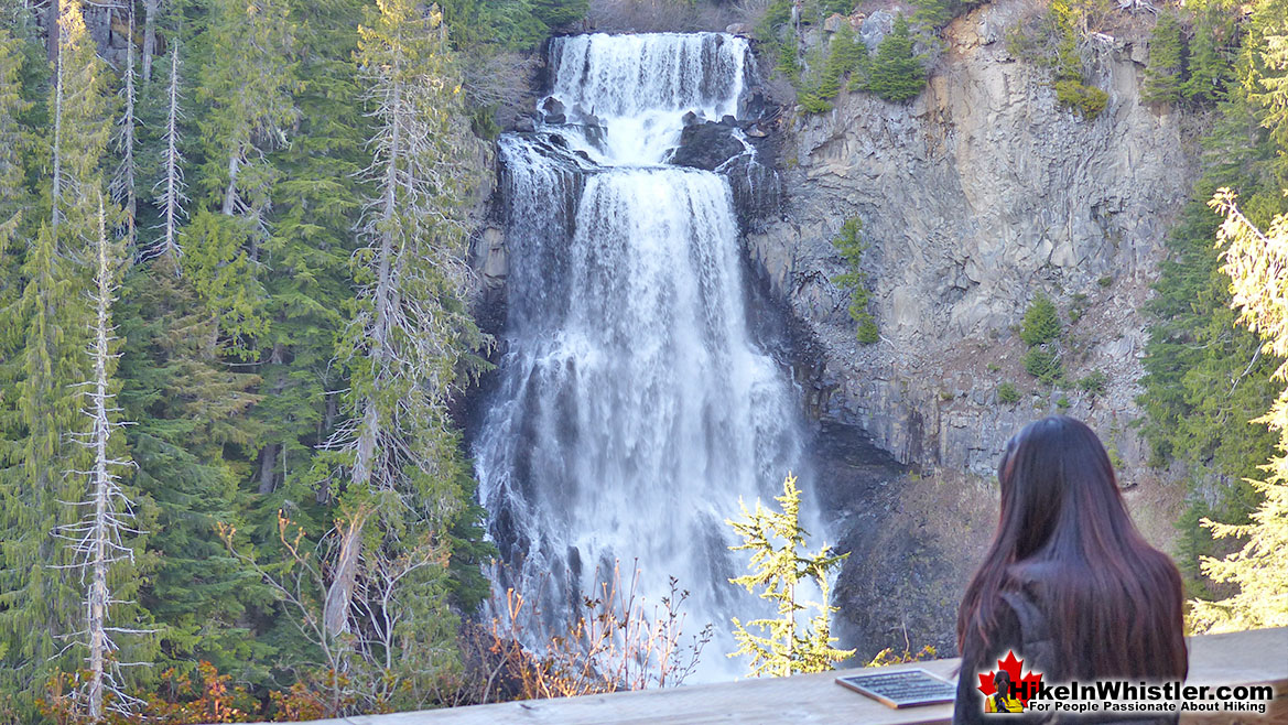 Alexander Falls Hike in Whistler November