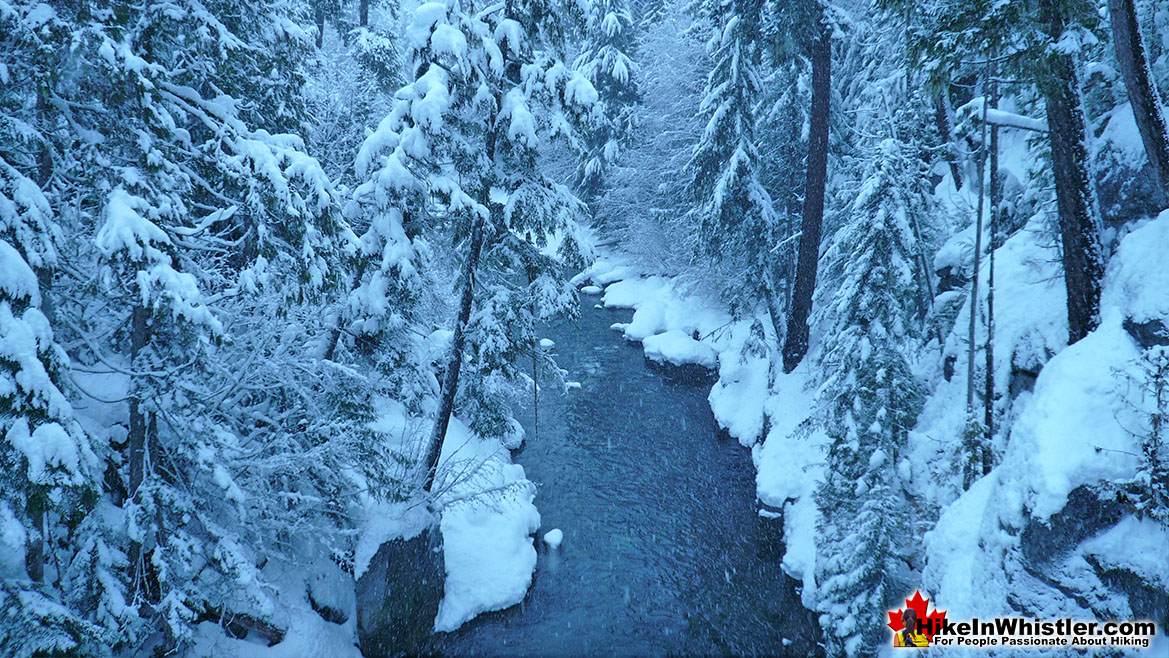 Cheakamus River Snowy Day