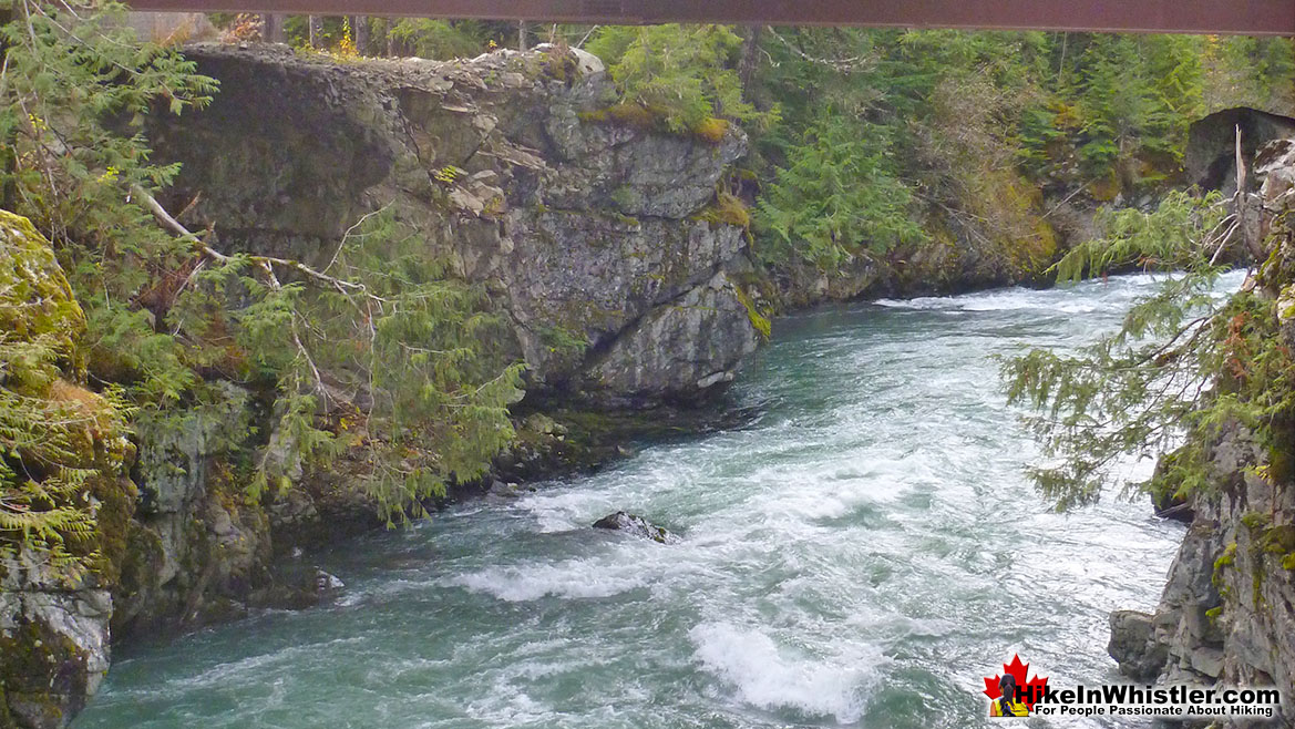 Cheakamus River Hike in Whistler in November