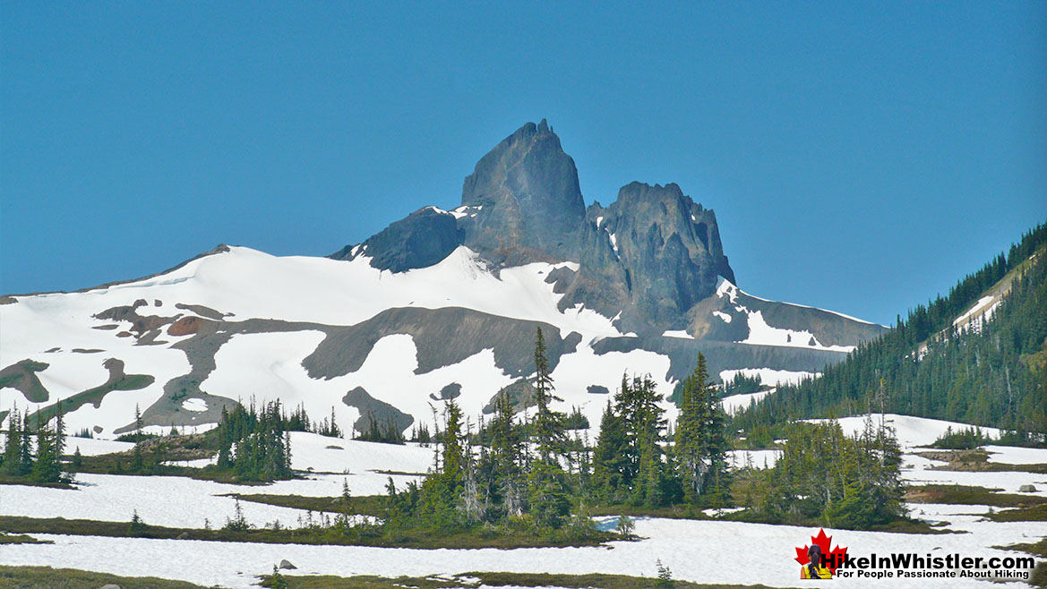 Black Tusk from Helm Creek Trail