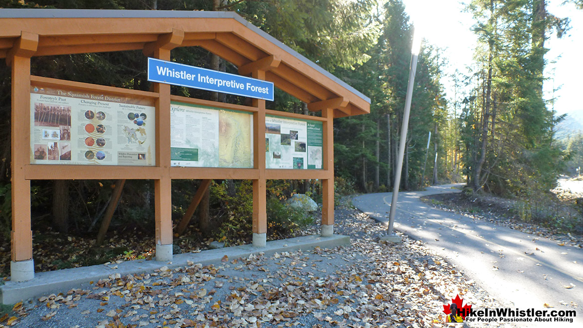 Whistler Interpretive Forest Trailhead Parking