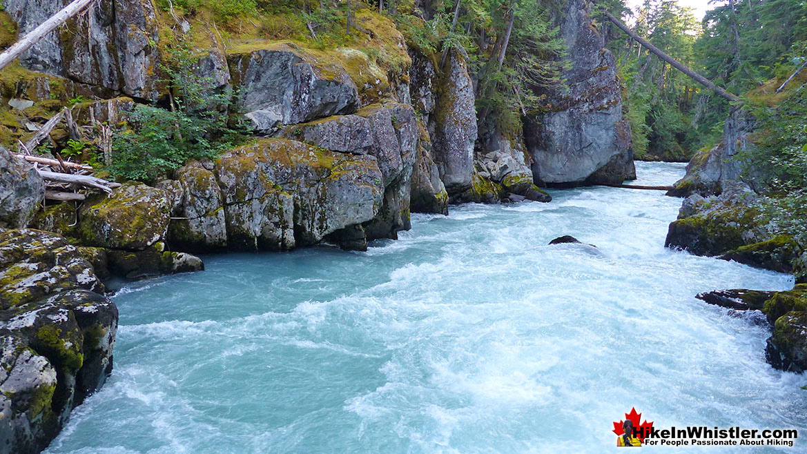 Cheakamus River at Whistler Trail Wreck